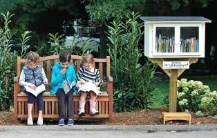 immagine  little free library - Fidapa Corato