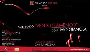 6X3 vento flamenco ridotta