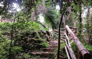 Foresta-Urbana-Lecce-4