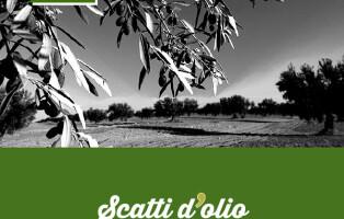 scatti-slide1