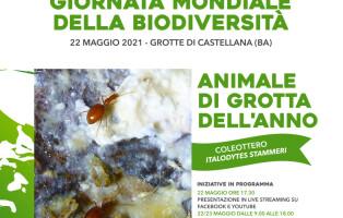 LOCANDINA_Biodiversita